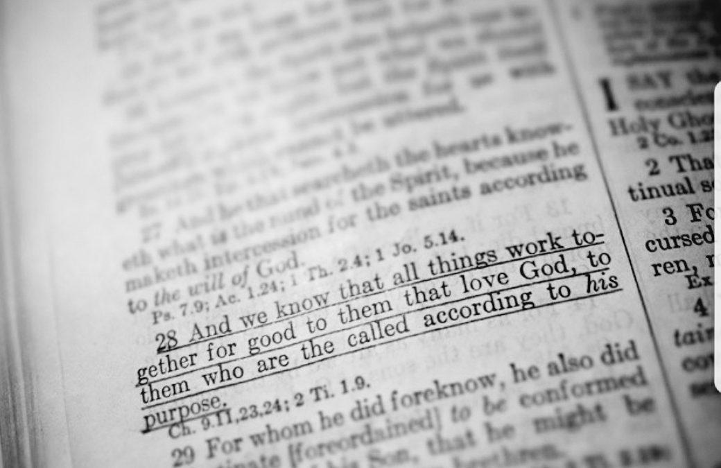 bible, #bible, #books, books